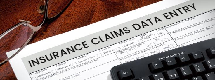 Insurance-Claim-Data-Entry Insurance Claim Data Entry